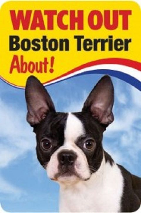 BOSTON TERRIER 3D  DOG SIGN